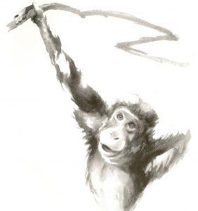 majom2