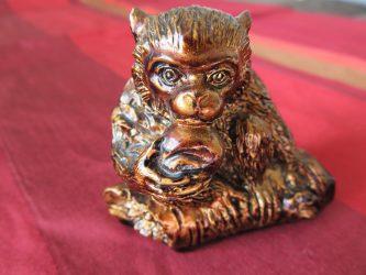 monkey-1176162_1920