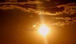 sunset-1625073_1920